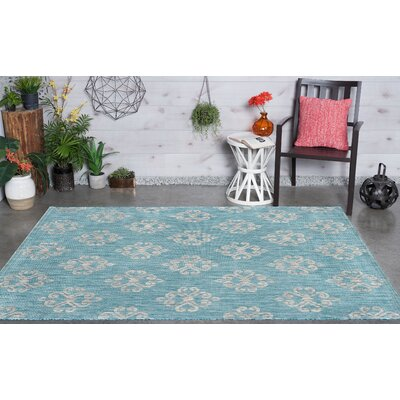 Segera Transitional Aqua Indoor/Outdoor Area Rug Rug Size: 67 x 96
