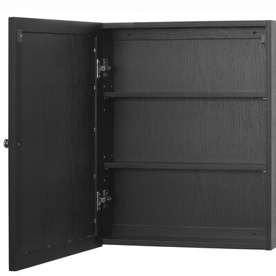 Sari 19 x 23.88 Surface Mount Medicine Cabinet Finish: Black
