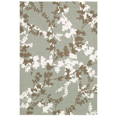 Mccall Willow Branch Hand-Woven Sage Indoor/Outdoor Area Rug Rug Size: Rectangle 36 x 56