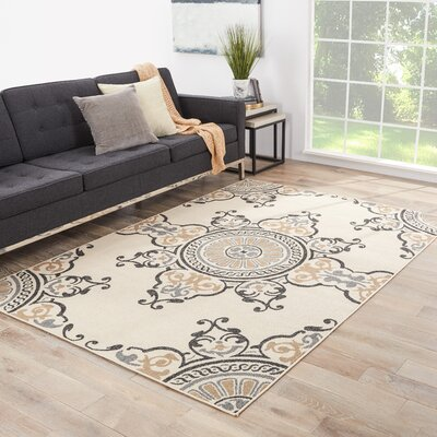 Stefani Birch/Gray Indoor/Outdoor Area Rug Rug Size: Rectangle 4 x 53