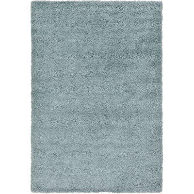 Lilah Light Blue Area Rug Rug Size: 6 x 9, Color: Blue