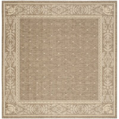 Short Brown Outdoor Area Rug Rug Size: Square 710