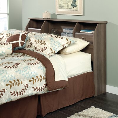 Revere Bookcase Headboard Size: Full/Queen, Color: Brown