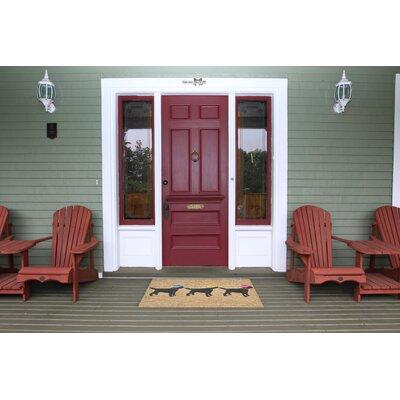 Wilton Hand-Tufted Neutral Indoor/Outdoor Area Rug Rug Size: 26 x 4