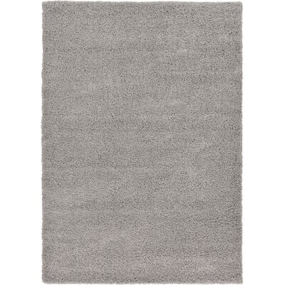 Lilah Gray Area Rug Rug Size: Rectangle 33 x 53