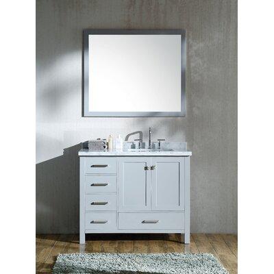 Marine 43 Single Bathroom Vanity Set with Mirror Base Finish: Gray