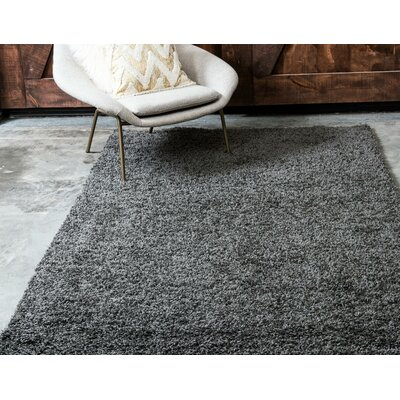 Lilah Dark Gray Area Rug Rug Size: Rectangle 2'2