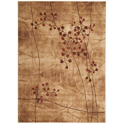 Smithtown Latte Area Rug Rug Size: Rectangle 53 x 75