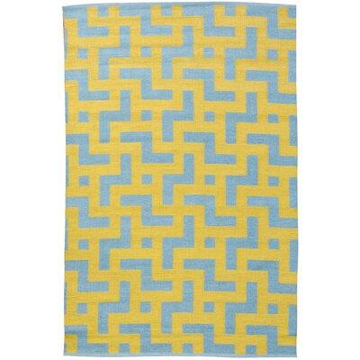 Persia Aqua/Mustard Area Rug Rug Size: 4 x 6