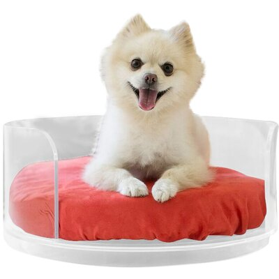 Acrylic Curved Dog Bed Color: Tango Orance