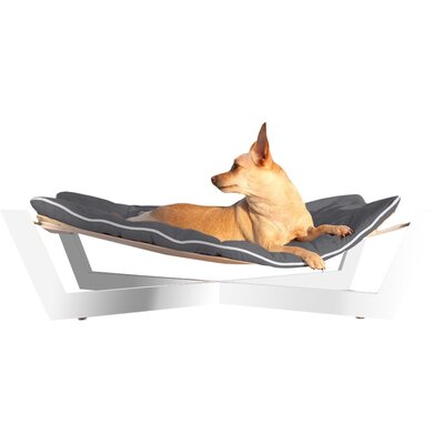 Tricia Pet Hammock Color: Graphite Gray