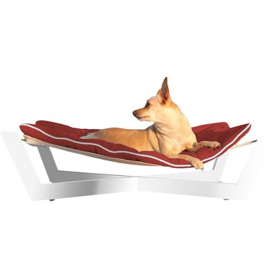Tricia Pet Hammock Color: Tango Orange