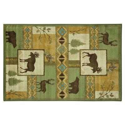 Montross Green Area Rug Rug Size: Rectangle 53 x 8