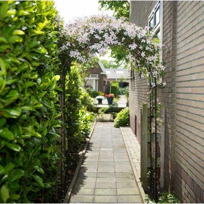 Rosenbogen | Garten > Pflanzen > Pflanzkästen | Stahl - Holz | dCor design