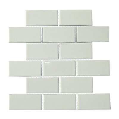 Classique 2 x 4 Porcelain Subway Tile in White