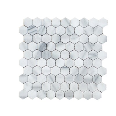 Hexagon 1 x 2 Natural Stone Mosaic Tile in Marmara