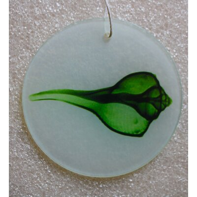 X-ray Designs Green Shell Frosted Glass Ornament orn-greenshell