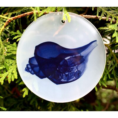 X-ray Designs Blue Shell Frosted Glass Ornament ORN-PREGBLUE