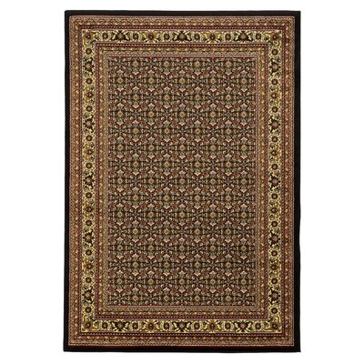 Northfields Black Area Rug Rug Size: Rectangle 5 x 7