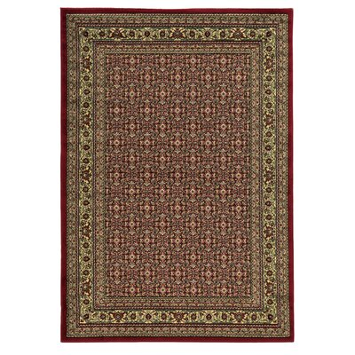 Colwyn Red Area Rug Rug Size: 8 x 10