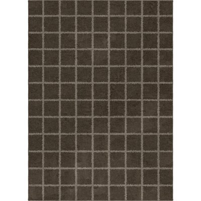 Dupont Taupe Area Rug Rug Size: 5'3
