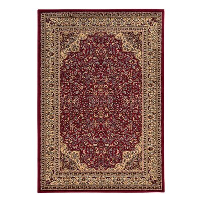 Traditional Area Rug in Maroon Rug Size: 5' x 7'