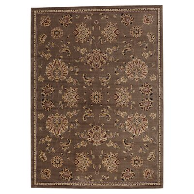 Brownville Light Brown Area Rug Rug Size: Rectangle 53 x 77