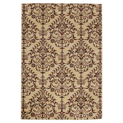 Lakeshore Brown Area Rug Rug Size: Rectangle 53 x 77
