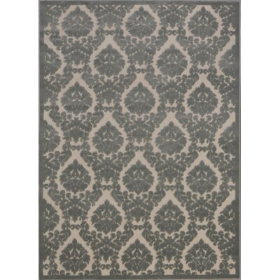 Weissport Gray Area Rug Rug Size: Rectangle 76 x 96