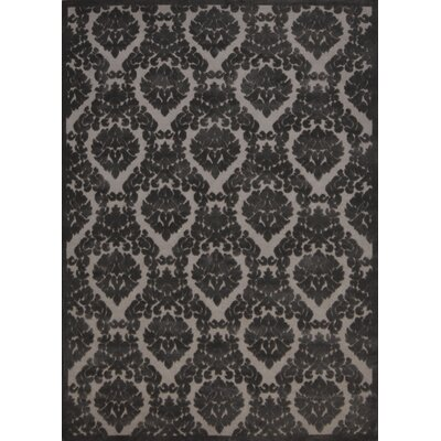Weissport Silver/Gray Ikat Area Rug Rug Size: Rectangle 53 x 73