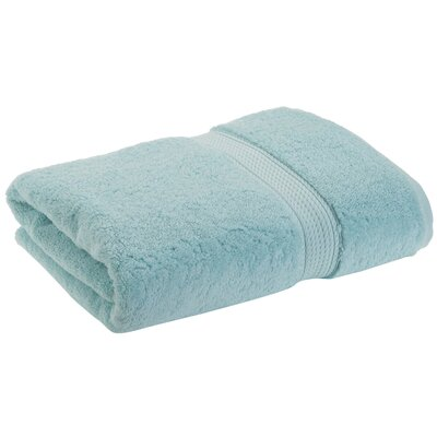 Superior 2 Piece Towel Set Color: Sea Foam