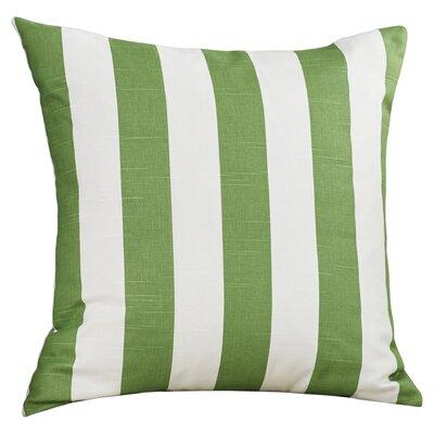 Brino Outdoor Throw Pillow Color: Sage