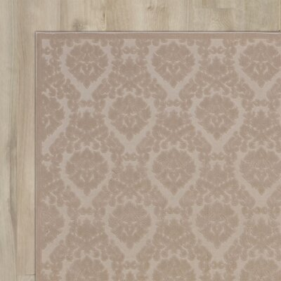 Weissport Ivory/Sand Area Rug Rug Size: Rectangle 36 x 56