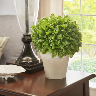 Faux Boxwood Topiary in Rustic Cermaic Pot