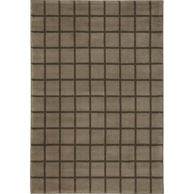 Dupont Soft Gray Area Rug Rug Size: 53 x 76