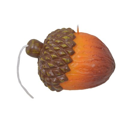 Acorn Novelty Candle Size: 4