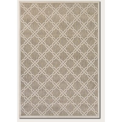 Arnot Gray/Cream Indoor/Outdoor Area Rug Rug Size: Runner 27 x 119