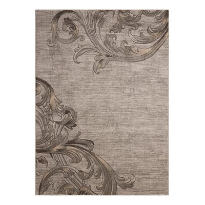 Regina Abstract Mocha Area Rug Rug Size: 53 x 73