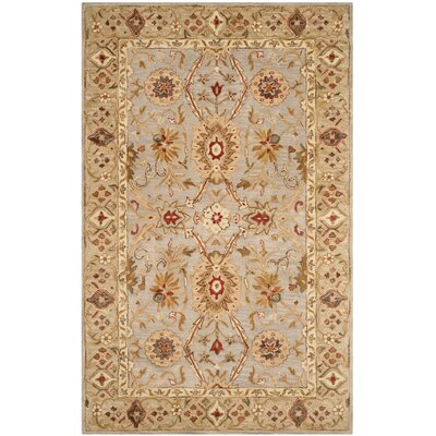 Ashville Hand-Tufted Area Rug Rug Size: 6 x 9