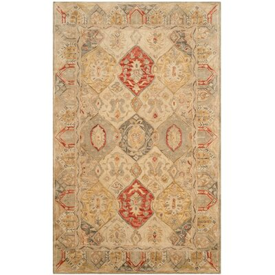 Ashville Hand-Tufted Oriental Area Rug Rug Size: Rectangle 76 x 96