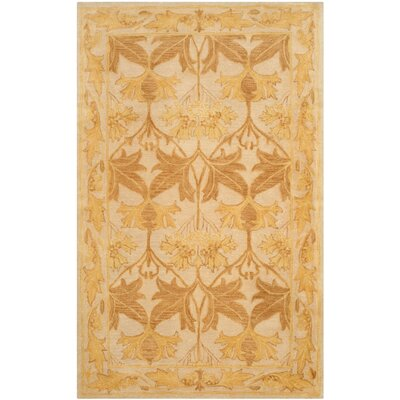 Ashville  Hand-Tufted Beige / Gold Area Rug Rug Size: Rectangle 6 x 9