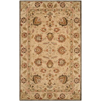 Ashville Hand-Tufted Beige Area Rug Rug Size: Rectangle 76 x 96