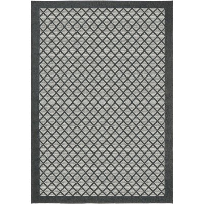 Acton Charcoal Indoor/Outdoor Area Rug Rug Size: 51 x 76