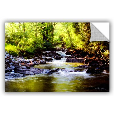 Woodland Brook Graphic Art Size: 12