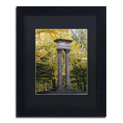 Autumn Columns Framed Photographic Print Size: 14