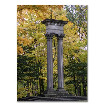 Autumn Columns Photographic Print on Wrapped Canvas Size: 19