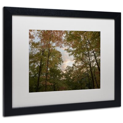 'Autumn Window to a Sunset' Black Framed Photographic Print Size: 16
