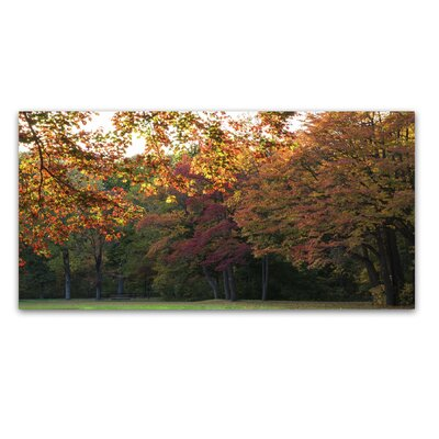 Brilliant Autumn in the Park Photographic Print on Wrapped Canvas