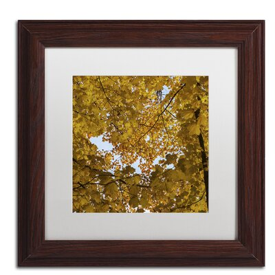 Golden Canopy of Autumn Framed Photographic Print