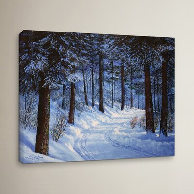 Forest Road Photographic Print on Wrapped Canvas